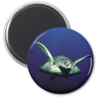 Vuelo subacuático imán redondo 5 cm