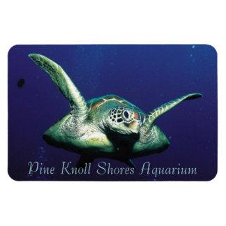 Vuelo subacuático imanes rectangulares
