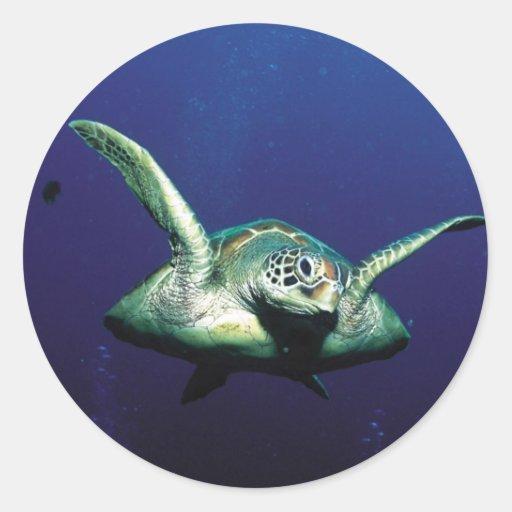 Vuelo subacuático pegatina redonda