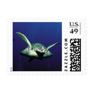 Vuelo subacuático sello postal
