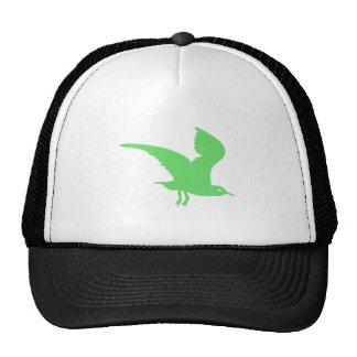 Vuelo verde del pájaro gorros