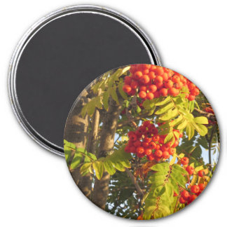Vuelta colorida de las flores+regalos del fiesta imán redondo 7 cm