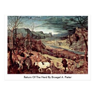 Vuelta de la manada por Bruegel A Pieter Tarjeta Postal