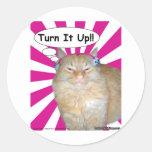¡Vuelta del gatito del hippy él para arriba!! Pegatinas Redondas