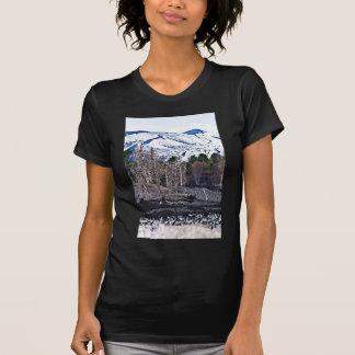 Vulcan Etna on Isle the of Sicily Playera