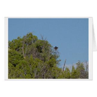 Vulture2 negro tarjeta de felicitación