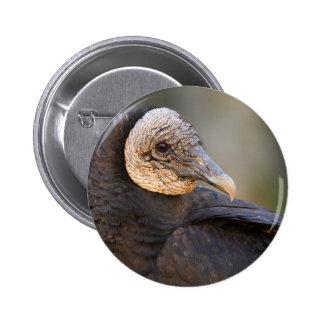 vulture pins