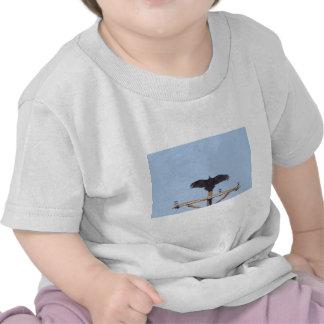 Vulture Ceremonial T Shirt