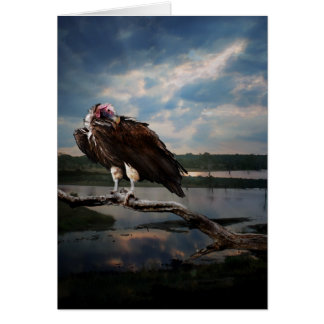 Vulture Fantasy Greeting Cards