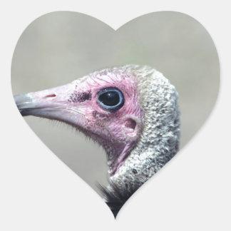 Vulture Heart Sticker