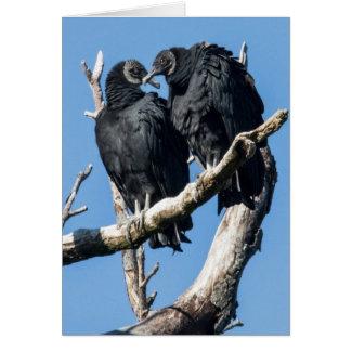 Vulture Honeymoon Card
