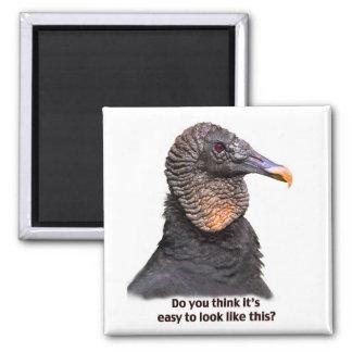 Vulture Magnet