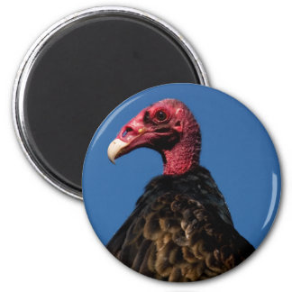 Vulture Profile 2 Inch Round Magnet