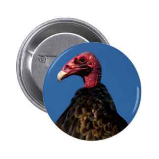 Vulture Profile Pins
