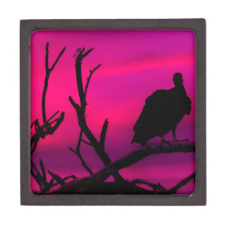 Vultures at Top of Tree Silhouette Illustration Jewelry Box