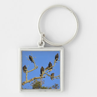 Vultures Keychain