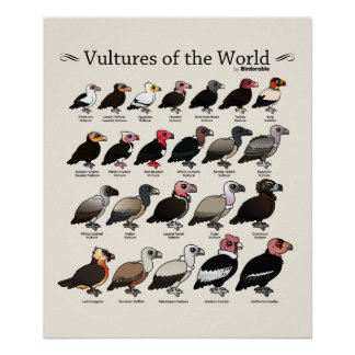 Vultures of the World by Birdorable Poster