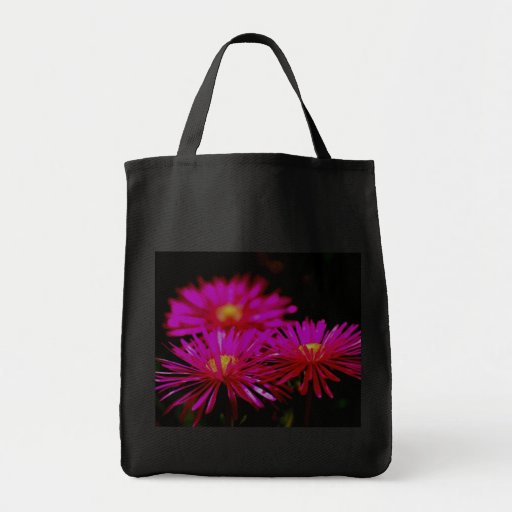 Vygies Canvas Bags