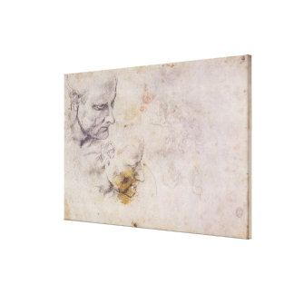 W.60 Sketch of a male head, in two positions Canvas Print