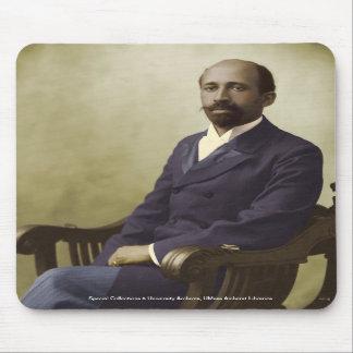 W E B Du Bois Tapete De Ratones