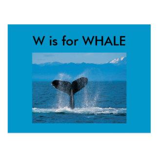 """""""W"""" está para el alfabeto Flashcard de la ballena Postal"""