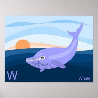 W para el poster de la ballena