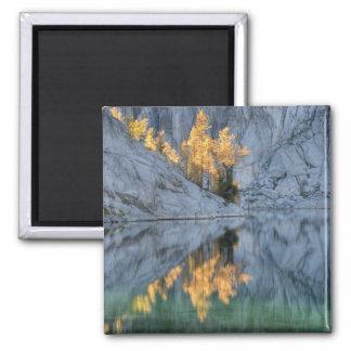WA Alpine Lakes Wilderness Enchantment 3 Fridge Magnet
