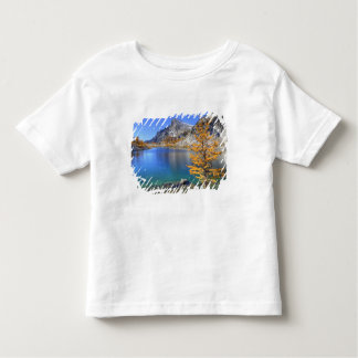 WA, Alpine Lakes Wilderness, Enchantment 4 Toddler T-shirt