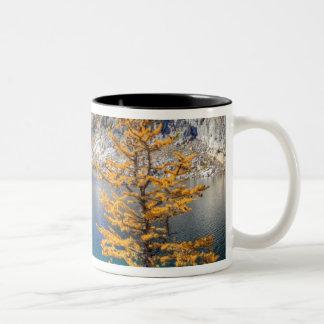 WA, Alpine Lakes Wilderness, Enchantment 4 Two-Tone Coffee Mug