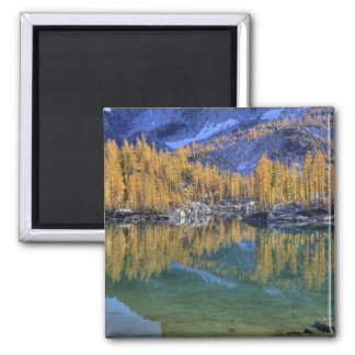 WA Alpine Lakes Wilderness Enchantment 5 Fridge Magnet