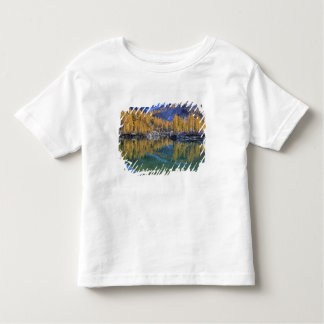 WA, Alpine Lakes Wilderness, Enchantment 5 Toddler T-shirt
