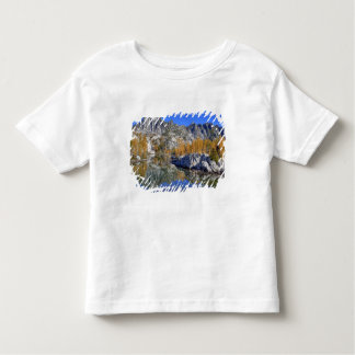 WA, Alpine Lakes Wilderness, Enchantment 7 Toddler T-shirt