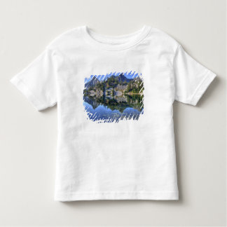 WA, Alpine Lakes Wilderness, Gem Lake, with 2 Toddler T-shirt