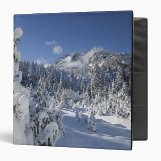 WA, Alpine Lakes Wilderness, Snow Lake basin Binder