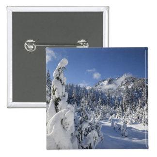 WA, Alpine Lakes Wilderness, Snow Lake basin Button