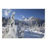 WA, Alpine Lakes Wilderness, Snow Lake basin Photo Print