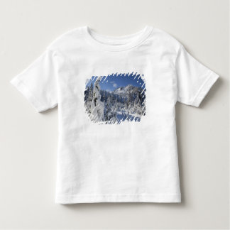 WA, Alpine Lakes Wilderness, Snow Lake basin Toddler T-shirt