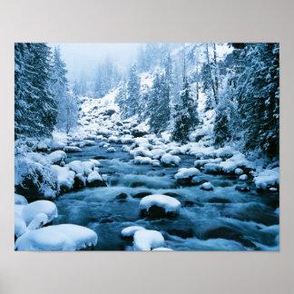 WA, bosque del Estado de Wenatchee, cascada Póster