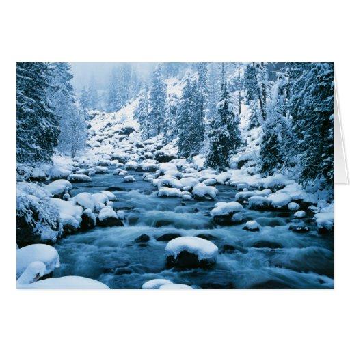 WA, bosque del Estado de Wenatchee, cascada Felicitacion