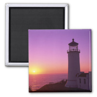 WA, Cape Disappointment State Park, North Head 2 2 Inch Square Magnet