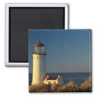 WA, Cape Disappointment State Park, North Head 2 Inch Square Magnet