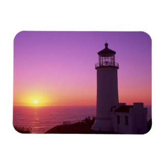 WA, Cape Disappointment State Park, North Head 2 Rectangular Photo Magnet