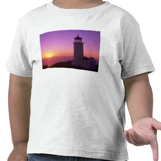 WA, Cape Disappointment State Park, North Head 2 Shirts