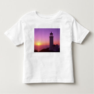 WA, Cape Disappointment State Park, North Head 2 Tshirts