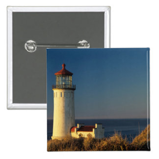 WA, Cape Disappointment State Park, North Head Button
