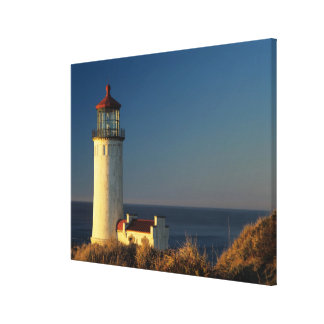 WA, Cape Disappointment State Park, North Head Canvas Print