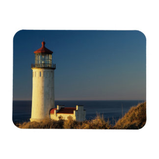 WA, Cape Disappointment State Park, North Head Magnet