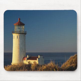 WA, Cape Disappointment State Park, North Head Mouse Pad