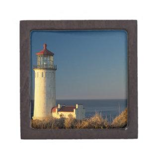 WA, Cape Disappointment State Park, North Head Premium Trinket Boxes