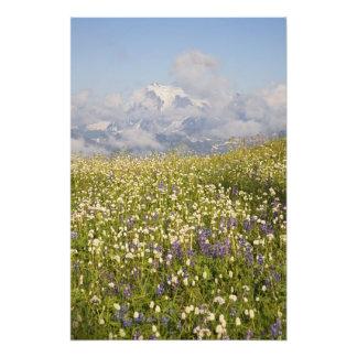 WA, desierto del panadero del Mt., Mt. Shuksan y Impresion Fotografica